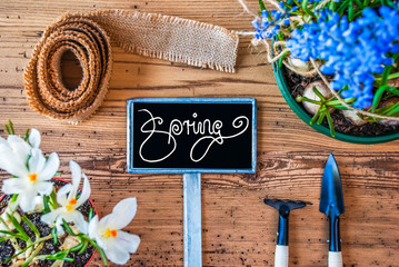 Spring Flowers, Sign, Calligraphy Spring, Wooden Background