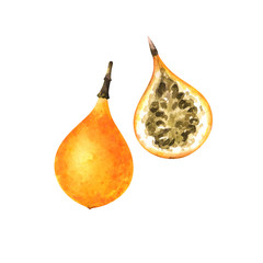 hand painted watercolor illustration of slice and whole yellow granadilla isolated on white background