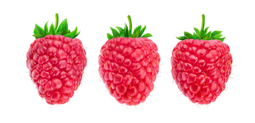 One raspberry isolated on white background, collection