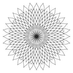 Sunflower mandala art design on white
