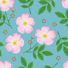 Pink flowers seamless pattern on blue background. Vector illustration of  blooming wild rose with green leaves and stems. Vector illustration of plant in cartoon simple flat style.