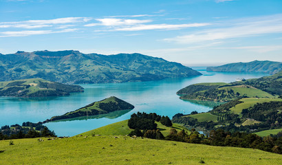 Overlook of scenic Akaroa harbour on the Banks Peninsula, Canterbury, South Island, New Zealand