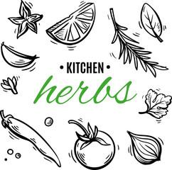 kitchen herbs for design restaurant menu