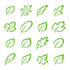 Simple set of linear green leaves vector icons. Contains such vector icons as oak leaf, currant leaf, strawberry leaf, ash leaf and others