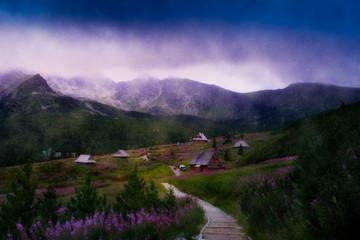 Trip to the mountains in a foggy and rainy day. Gasienicowa Valley, Zakopane, Poland. Fototapete