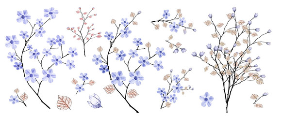 Branch with pink flowers, watercolor painting. Set: spring flowers, twigs, leaves. Botanical illustration.