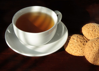 White cup with green tea on a saucer with a few oatmeal cookies in the morning sun