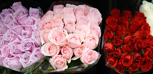Wall Mural - bouquets of rose flowers with different color