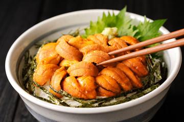 ウニ丼 Bowl of rice topped with sea urchin