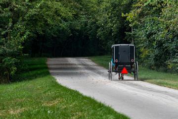 Ohio Buggy on Path