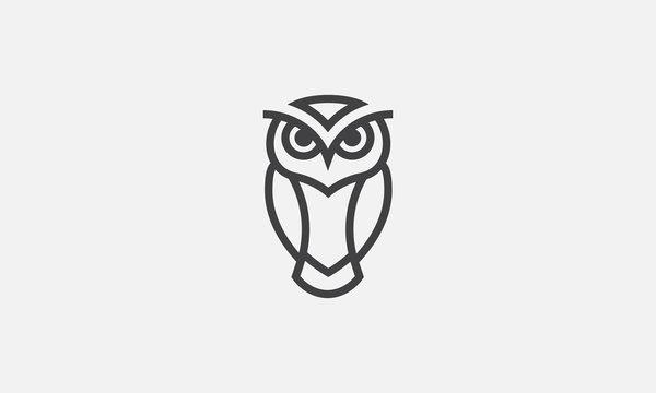 owl illustration, owl logo design, vector