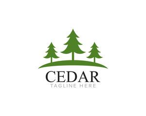 Cedar tree Logo template vector icon illustration design