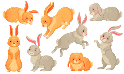 Cartoon bunny. Rabbits pets, easter bunnies and plush little spring rabbit pet isolated vector illustration set