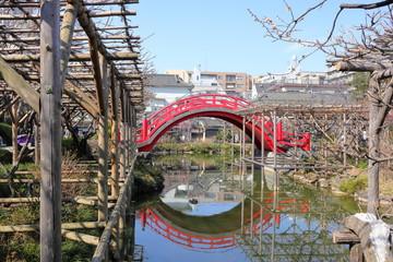 Foto auf Leinwand London roten bus 日本 亀戸の風景