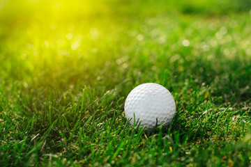 A golf ball with a number one on its side lies on the grass
