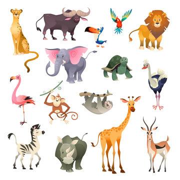 Jungle wild animals. Savannah forest animal bird safari nature africa tropical exotic forest marine mammals, cartoon set