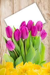 Tulips with white label background