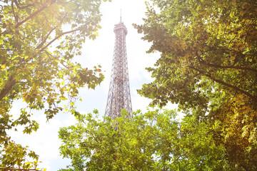 Eifel tower top through the green trees foliage,