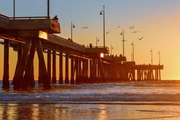 Sunset over Venice Beach Pier in Los Angeles, California - Birds