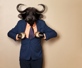 Male wildebeest in office clothing suit and shirt