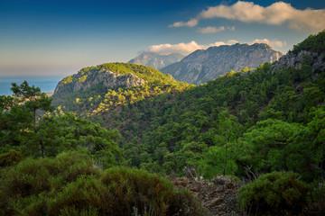Evening at Chimera mountain. Turkey.