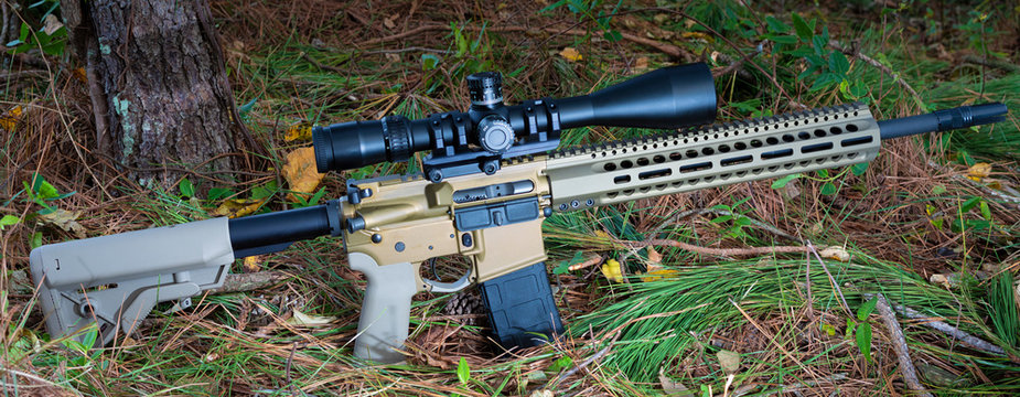 AR-15 in the forest