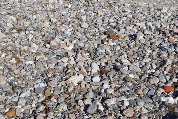Beuatiful stone pebbles at the beach of the baltic sea in the north of germany