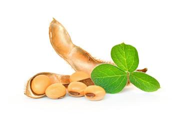 Fototapeta Soybean seeds with soy leaf on white background obraz