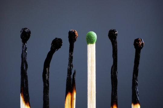 Line of burnt matches and one brand new. Individuality, leadership, burnout at work and energy.