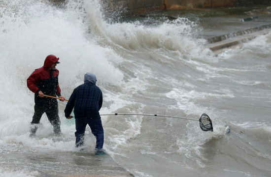 Men use nets to try to catch fish which escaped from an offshore fish farm as gale force winds and rough seas lash the Maltese islands, in St Paul's Bay