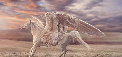 Rosy Sunset Pegasus
