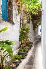 Fototapete - Old narrow street in Anafiotika, Plaka district, Athens, Greece