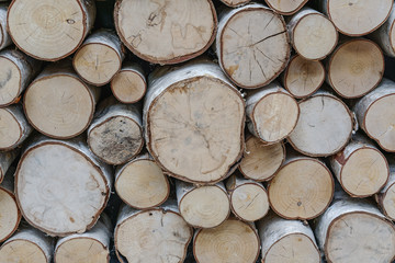 Keuken foto achterwand Brandhout textuur sawed ends of a pile of birch firewod