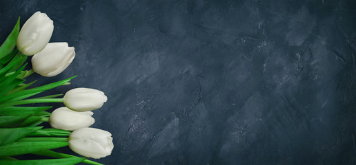 Wide Angle Grunge background with white tulip flowers