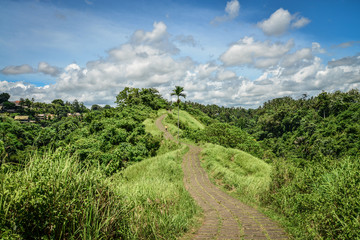 Campuhan Ridge Walk, Ubud, Bali, Indonesia.
