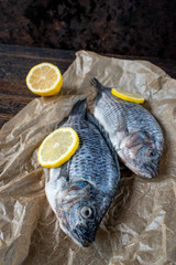 Two whole Tilapia uncooked with lemons on wax paper and dark wood background