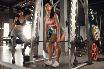 Sports woman exercising in gym with personal trainer. Workout