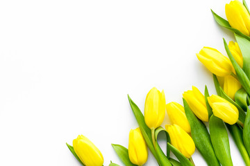 Spring composition. Delicate yellow tulips on white background top view copy space border - fototapety na wymiar