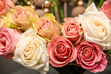 rose flowers for calendar and postcard