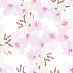 Spring floral seamless pattern with delicate flowers and buds of pink oleander on white background. Tropical endless texture. Summer print. Textile design. Blooming Nerium garden. Vector illustration