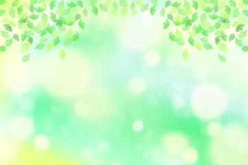 緑の葉 水玉,バブル,光のバックグラウンド