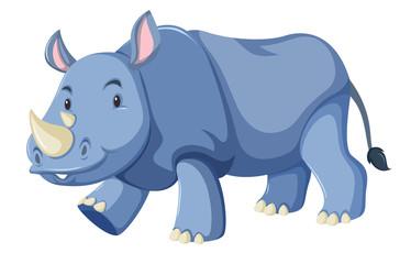 Cute baby rhino white background