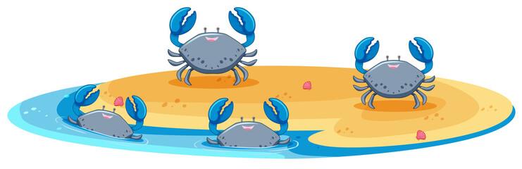 Blue crab on island