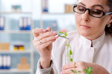 Female biotechnology scientist chemist working in the lab