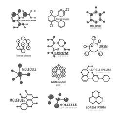 Molecular logo. Chemistry dna molecule scientific structure atom business brand vector concept. Illustration of molecular chemistry, dna logo, molecule structure