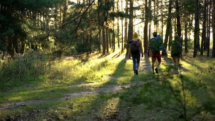 Friends with rucksacks hiking in woods, active lifestyle, pov of criminal danger Fotobehang