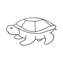 Hand Drawn turtle doodle. Sketch style icon. Decoration element. Isolated on white background. Flat design. Vector illustration.