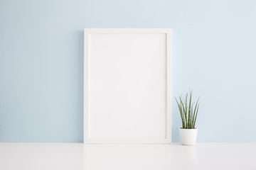 Frame mock up and succulent plant against blue wall.