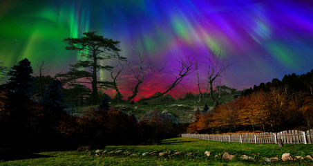 Northern lights, sky close-up. All colors of the rainbow. Great view. The whole palette of colors in the same sky