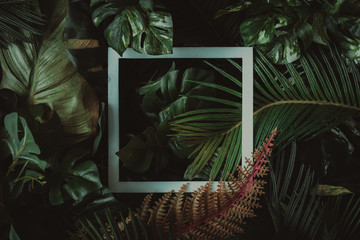 Creative layout made of tropical leaves with paper card note. Flat lay. Nature concept.
